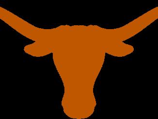 texas beats kansas 24-17