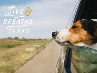 Drive Clean Texas Campaign
